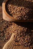 Buckwheat close up Stock Photography