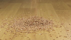 Buckwheat  falling on a pile of buckwheat stock video