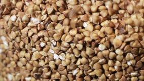 Buckwheat filling glass jar stock video