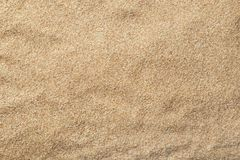 Buckwheat flour as background, top view. Gluten free product royalty free stock photo