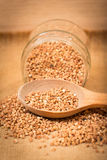 Buckwheat in glass jar Stock Photography