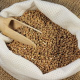 Buckwheat grain Royalty Free Stock Photos