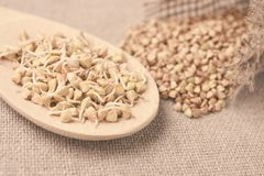 Buckwheat grain. Grain sprouts. Wooden spoon. Natural background Stock Image