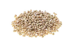 Buckwheat grain heap on white background Royalty Free Stock Images