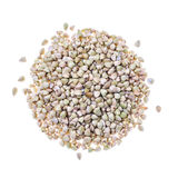 Buckwheat grain heap on white background by top view Stock Photography