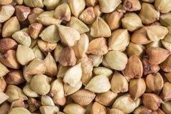 Buckwheat grain at life-size Royalty Free Stock Image