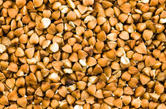 Buckwheat grains Royalty Free Stock Photo