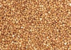 Buckwheat. Grains. Royalty Free Stock Photo