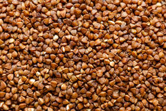 Buckwheat grains background. Close-up view, macro view Royalty Free Stock Image
