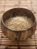 Buckwheat grains Royalty Free Stock Photo