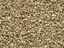 Buckwheat grains Stock Photo