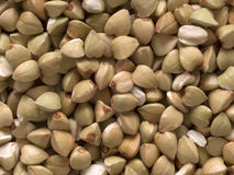 Buckwheat grains Royalty Free Stock Image