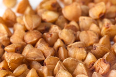 Buckwheat grains Stock Images