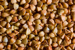 Buckwheat grains texture Stock Photography
