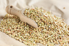 Buckwheat grains Royalty Free Stock Photography