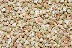 Buckwheat Groat. Brown Buckwheat groat close up Royalty Free Stock Images