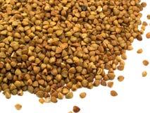 Buckwheat groats Stock Images