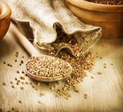 Buckwheat groats Royalty Free Stock Images