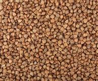 Buckwheat groats Royalty Free Stock Photos