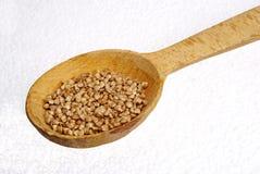 Buckwheat groats. Buckwheat groats in a wooden spoon Stock Photos