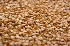 Buckwheat groats. A background. Shallow DOF Royalty Free Stock Images