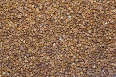 Buckwheat groats, abstract background. royalty free stock photo