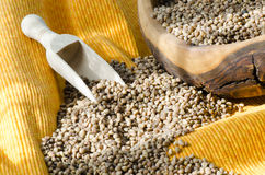 Buckwheat Groats Stock Image