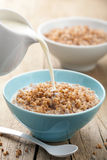 Buckwheat groats with milk Royalty Free Stock Photo