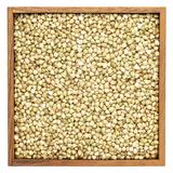 Buckwheat groats in wooden box Royalty Free Stock Photography