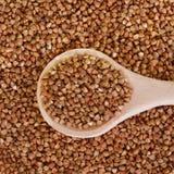 Buckwheat groats in a wooden spoon. Closeup Stock Image