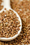 Buckwheat groats. In wooden spoon Royalty Free Stock Photography