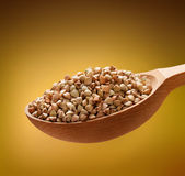 Buckwheat groats in a wooden spoon Stock Photography