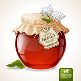 Buckwheat honey jar Stock Photo