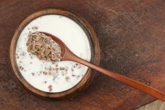 Buckwheat kasha with milk Royalty Free Stock Image