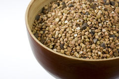 Buckwheat (kasha), toasted whole grain. A wooden bowl of buckwheat (kasha), toasted whole grain, white copy space Stock Photo