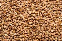 Buckwheat macro close up Stock Photo