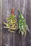Buckwheat and medical mugwort Artemisia vulgaris bunch on old wall Royalty Free Stock Images