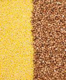 Buckwheat and millet background. Close-up, cooking ingredients Stock Images