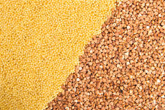 Buckwheat and millet Royalty Free Stock Photo