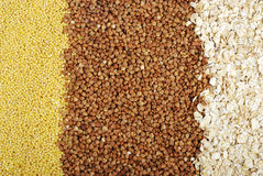 Buckwheat, millet and oat groats Stock Photography