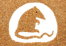 Buckwheat mouse Stock Photos