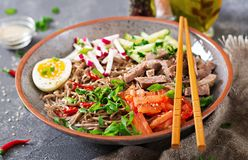 Buckwheat noodles with beef, eggs and vegetables. Korean food. Buckwheat pasta soup stock photography