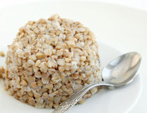 Buckwheat on the plate. Cooked buckwheat on the plate Royalty Free Stock Photos