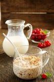 Buckwheat porridge with milk Stock Images