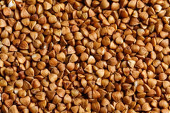 Buckwheat raw food ingredient texture. Macro close up detailed Stock Image