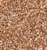 Buckwheat ready to eat Royalty Free Stock Photo