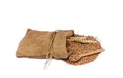 Buckwheat in a sack Royalty Free Stock Photography