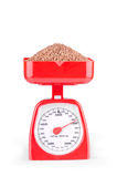 Buckwheat on the scales Stock Photo