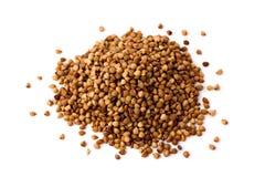 Buckwheat seeds Stock Photo