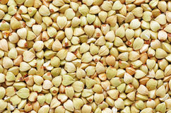 Buckwheat seeds Royalty Free Stock Photo